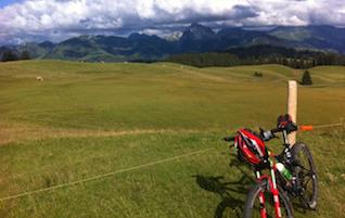 MTB / Cycling